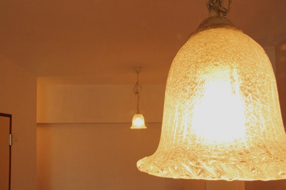 松戸の家2(無垢な賃貸) (照明)
