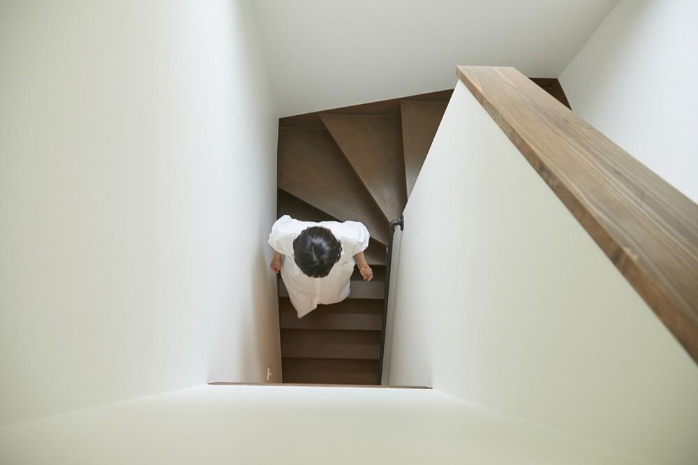 高台に建つ家 (階段)
