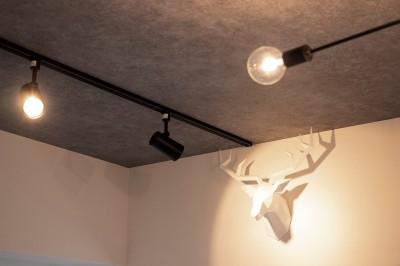天井 (寝室とリビングを同じ空間に)