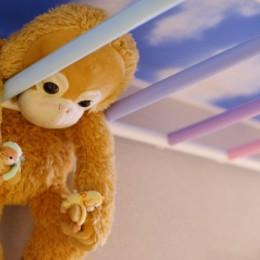 カラフルな雲梯 (うんていにハンモックに隠し扉まで⁉           遊び心満載の毎日が楽しい家)