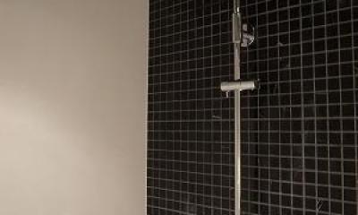 築35年マンション 水廻り限定リノベ (2種類のシャワー)