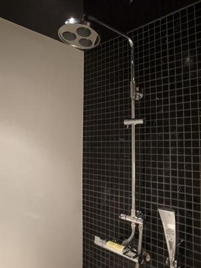 2種類のシャワー (築35年マンション 水廻り限定リノベ)
