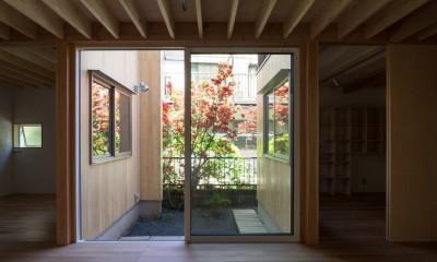 高津の家 旗竿地に立つツツジの樹に寄り添う家|新築