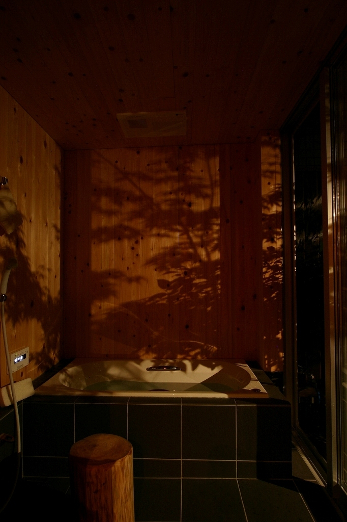 木質スケルトン+DIYでつくるこだわり空間の部屋 浴室2