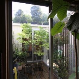 木質スケルトン+DIYでつくるこだわり空間 (中庭)