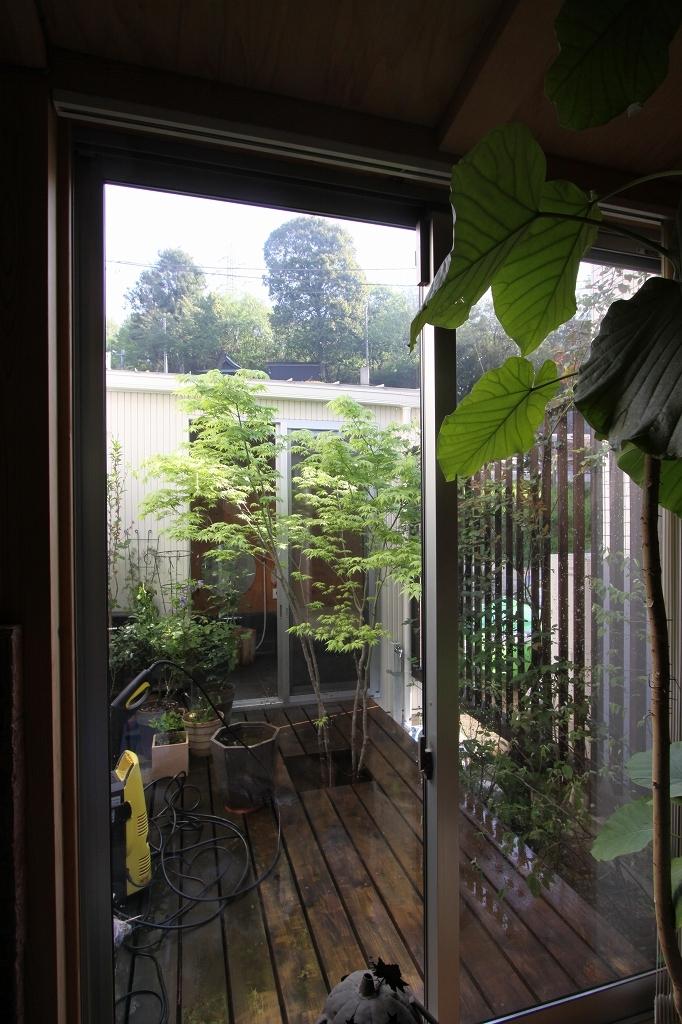 木質スケルトン+DIYでつくるこだわり空間の写真 中庭