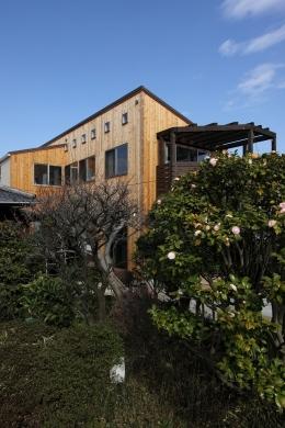 緑豊かな敷地環境を継承する木造スケルトンハウス (外観1)
