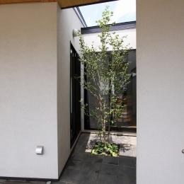 庭と繋がるテラスハウス (中庭)