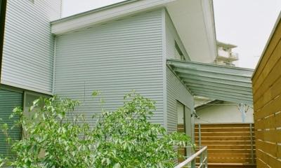 大井町の家―中庭を囲むH型プラン (中庭をめぐる空中回廊)