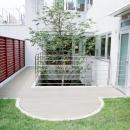 屋上庭園とシンボルツリー