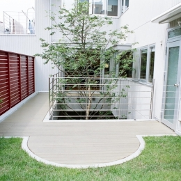 浅草の家―2階にある庭-屋上庭園とシンボルツリー
