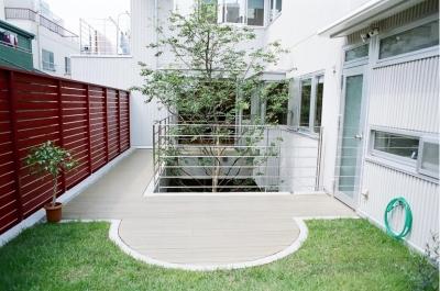 屋上庭園とシンボルツリー (浅草の家―2階にある庭)