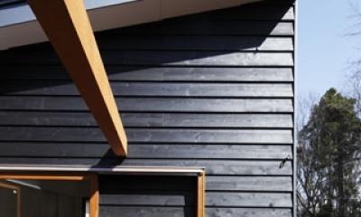 森を眺める黒い家 (中庭型バルコニー1)