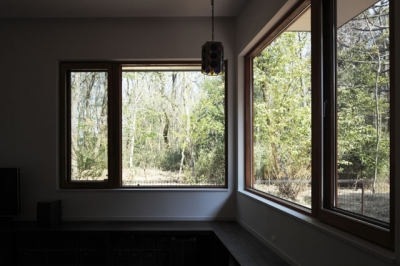 リビングダイニング5 (森を眺める黒い家)