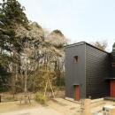 森を眺める黒い家