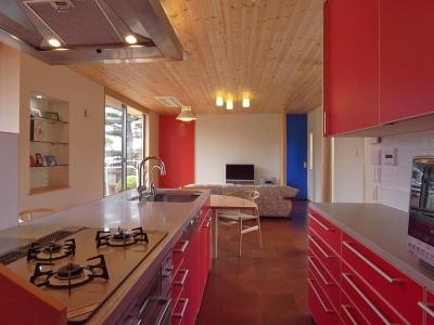 上尾の家-二世帯住宅へのリフォーム (キッチン)