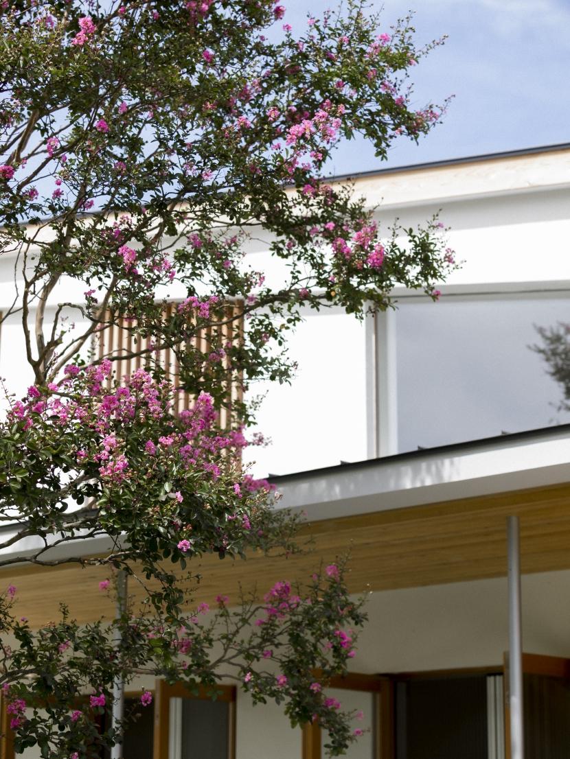 軌跡の家の写真 サルスベリ越しの外観