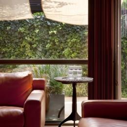 「H Residence」緑豊かな庭に囲まれたRC造の邸宅 (リビングより庭を見る)