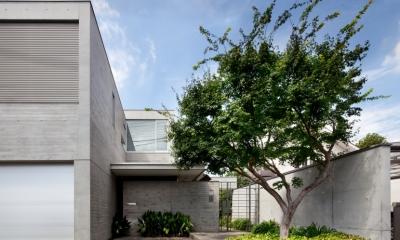 「H Residence」緑豊かな庭に囲まれたRC造の邸宅