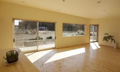 2つ屋根の家 (LDK1)