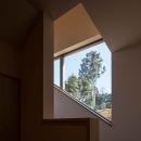 伊豆の国の家の写真 借景窓