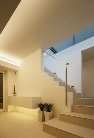 玄関 (「S Residence」斜面地に建つ開放的な邸宅)