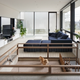 Dogs' Room
