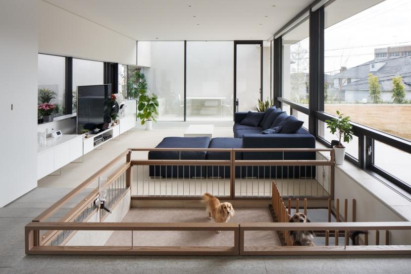「S Residence」斜面地に建つ開放的な邸宅 (Dogs' Room)