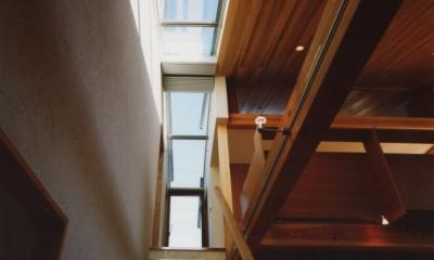 光を抱く家 (階段)