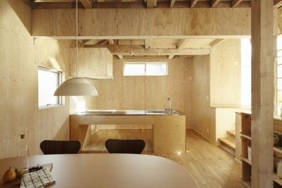 キッチン (世田谷野毛の家)