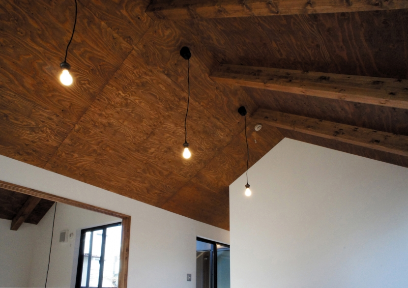 architype イエガタのいえの写真 イエガタの天井