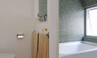 CO-HOUSE4  good-shelf (浴室)