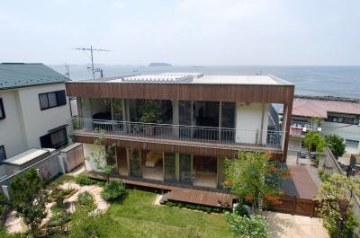 YK-House (南側の山から見た外観)