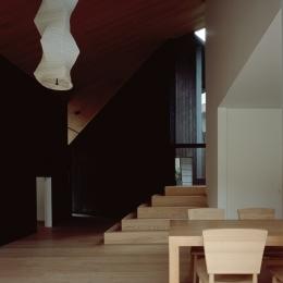 明暗と素材の変化による多様性 (城ヶ崎海岸の家)