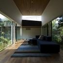 雑木林の中のソファー