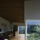 多層に重なる雑木林の中庭がある家