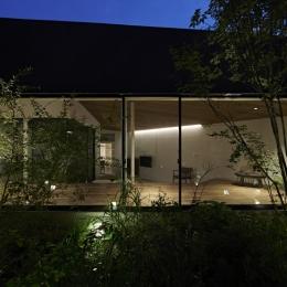 蛍のような照明の映り込みが美しい中庭