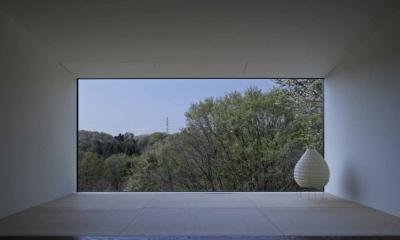 富士見ヶ丘の家 (北側採光の大開口)
