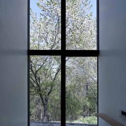 自生の山桜を望むバスルーム