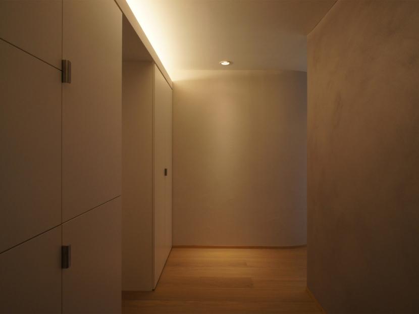 ステージのある家の部屋 玄関