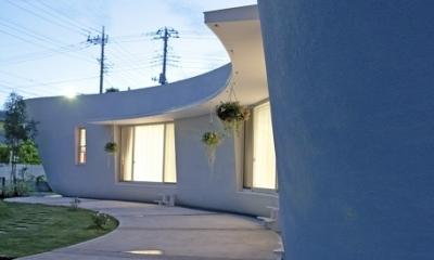 緑のカーテンの家 (庭)