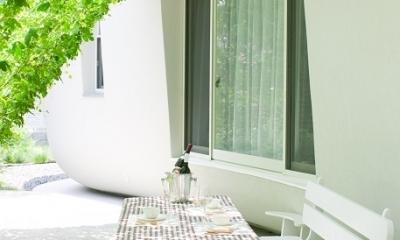 緑のカーテンの家
