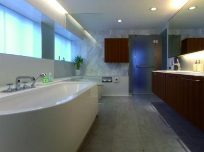 浴室・風呂 (ダブルリビングのある家)