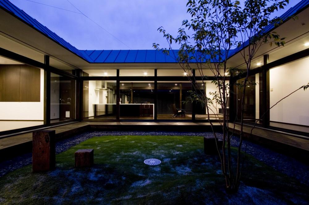 建築家:宝角陽輔「猫と快適に暮らす家」
