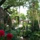 Rose garden and Green Curtain