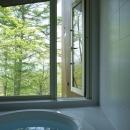森に面した浴室