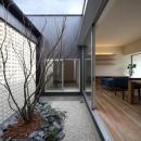 一宮の家の写真 中庭