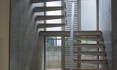 ギャラリーのある二世帯住宅 (玄関ホール・階段)