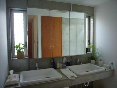 洗面脱衣室 (中庭と坪庭のある家)