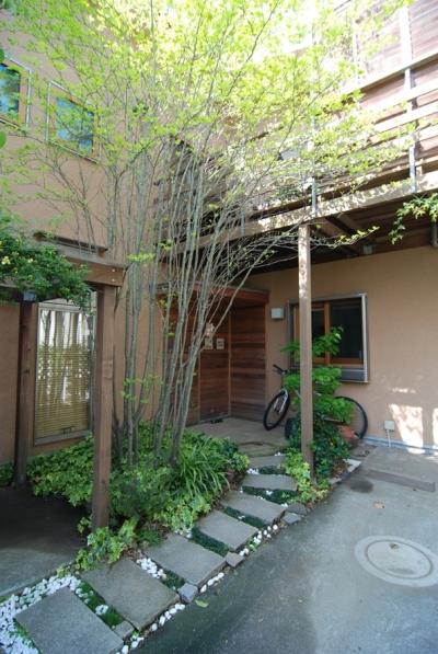 小さな家~緑の中で暮らす木のアトリエ付住宅~ (小さくても庭が欲しい)